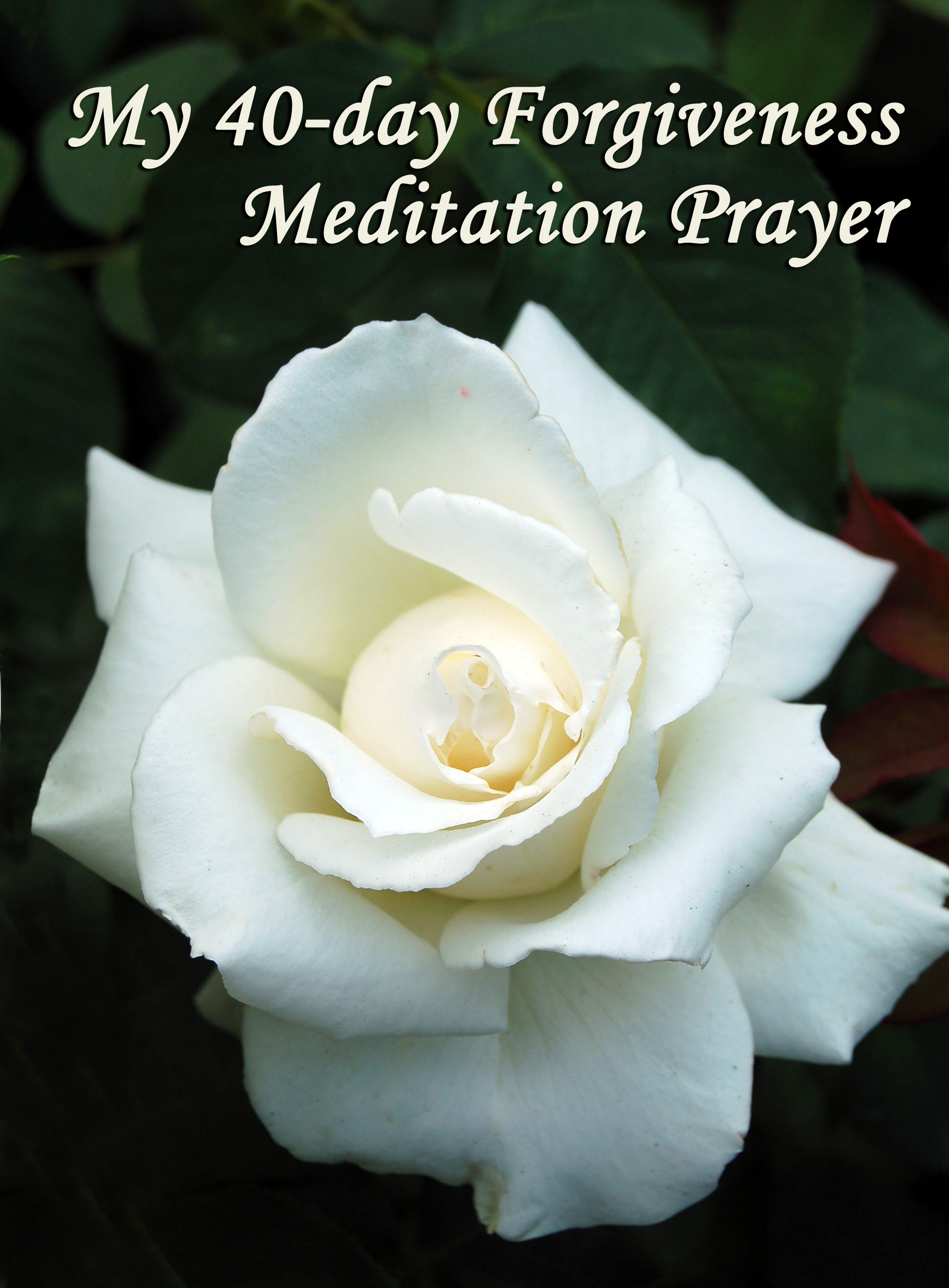 40-day Forgiveness Meditation Prayer
