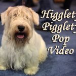 Higglety Pigglety Pop Video