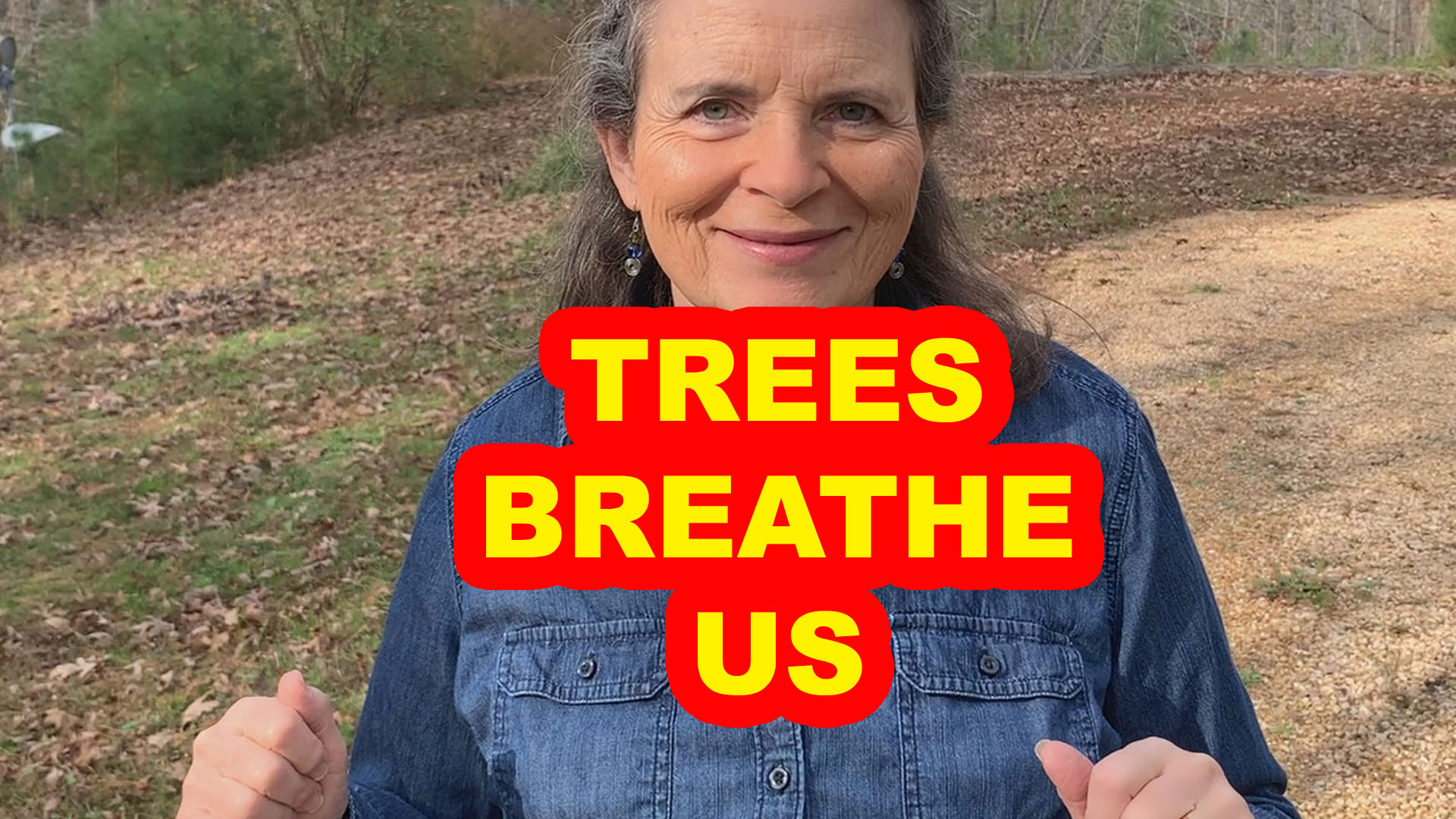 Trees Breathe In What We Breathe Out
